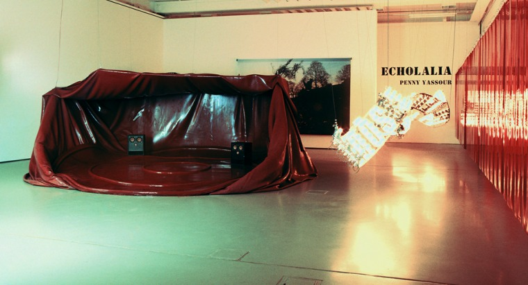 פני הס יסעור, מראה כללי; ארנה רכה, 2000-2001 קופסת עץ, יציקת גומי, פוליאוריטן, מוטות מתכת, מידות משתנות, מוזיאון הפרידריציאנום, קאסל, גרמניה צילום: דיטר שוורדטל. באדיבות האמנית