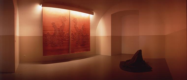 """פני הס יסעור, מפות מנטיות - זיכרון לא רצוני, 1997 תאורת פלורסנט, גומי, גומי סיליקוני, צבע קיר, 300X240X1 ס""""מ, דוקומנטה X מוזיאון הפרידריציאנום, קאסל, גרמניה מתוך מפות מנטיות - זיכרון לא רצוני אוסף הדוקומנטה במוזיאון ה-Neue Galerie, קאס"""
