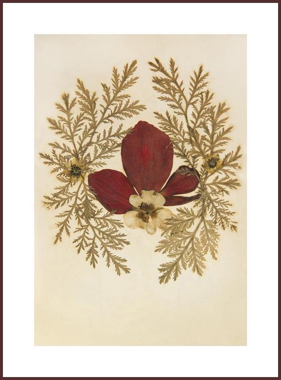 1917 #01, 2012, photograph, 135x100 cm Archival inkjet print on Fine Art photo paper
