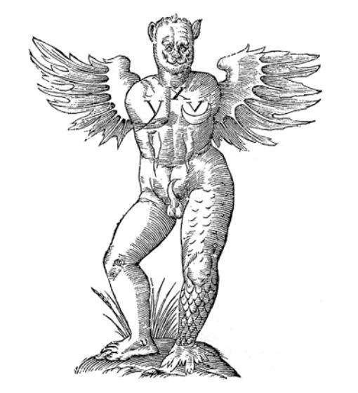 מפלצת מכונפת, מתוך Ulise Aldrovandi, Opera Omnia Bononiane, (1559-1668), PAGE 370)