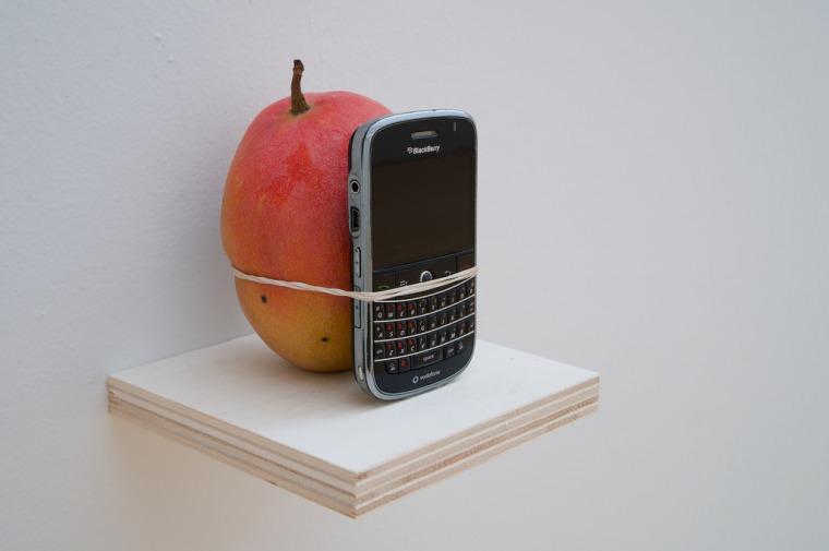 ווילפרדו פרייטו. תראו כמה גדול המנגו הזה 2011. באדיבות המוזיאון לאמנות לאטינו-אמריקניות בבואנוס איירס