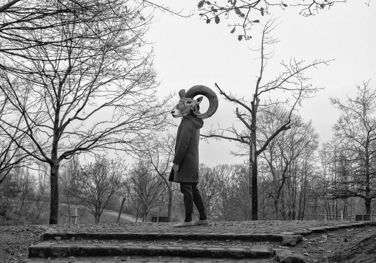 """""""הקדמתי את זמני והפעם חיות הבר משתלטות על העיר"""" (10 באפריל 2020). צילום: מרב מרודי"""