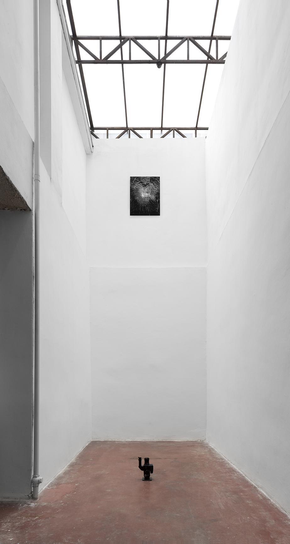 מתן מיטווך, מראה הצבה. 2015. באדיבות גלריה דביר והאמן. צילום: אלעד שריג