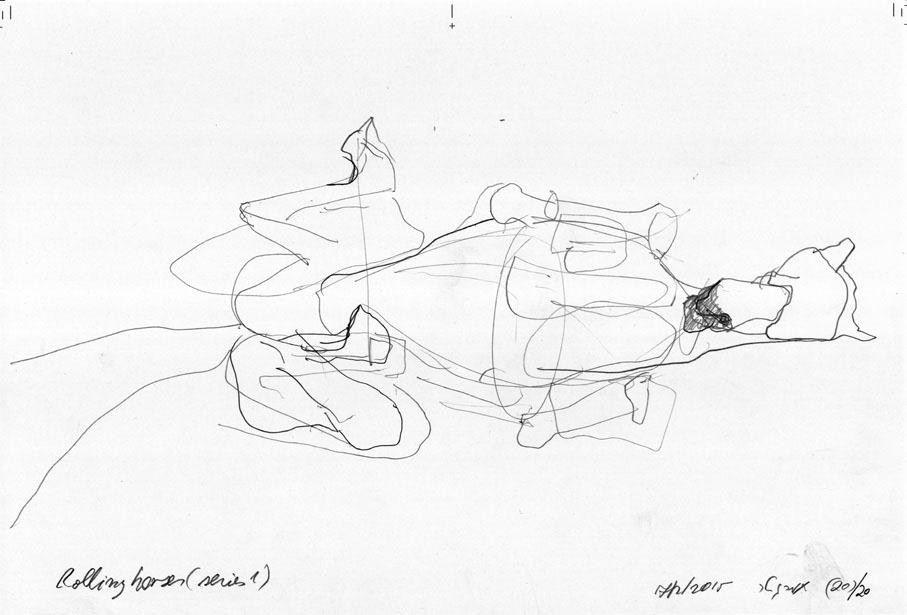 תמר גטר, מתוך סדרות סוסים מתגלגלים, הליוטרופיון, 2017 (פרט)