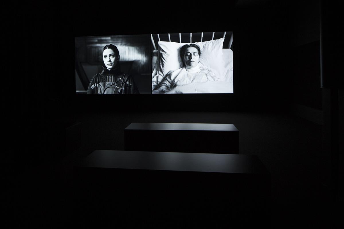 """استعراض لمعرض الفنانة لاريسا صنصور المكوّن من جناحين، الأول فيلم بعنوان """"في المختبر"""" - HEIRLOOM  (IN VITRO)  بتكليف من المؤسسة الدنماركية للفنون في بينالي فينيسيا (البندقية) الثامن والخمسين، """"في المختبر""""، شارك في الإخراج سورين ليند (Soren Lind). قيّم المع"""