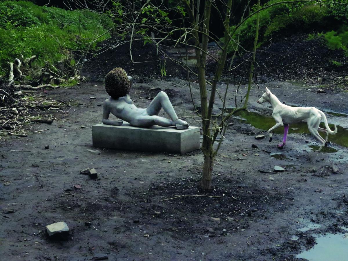 Untiled באדיבות האמן, גלריית מריאן גודמן, גלריית האוזר ווירט וגלריית אסתר שיפר, ברלין. 2011-12