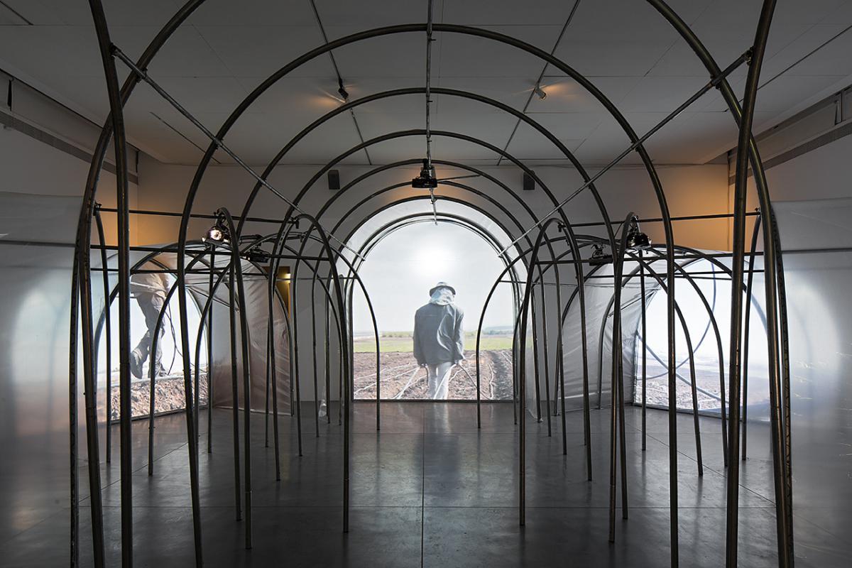 שרון גלזברג, החקלאות מחזה בחמש מערכות, הקרנת 8 ערוצי וידיאו בתוך ארכיטקטורת חממות, 2014-2015 (פרט מן המערכה הראשונה)