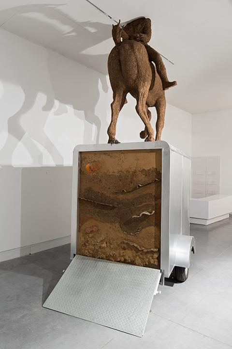 זוהר גוטסמן, דישון-יתר, 2014-15 מראה הצבה: מוזיאון פתח תקוה לאמנות (צילום: אלעד שריג)