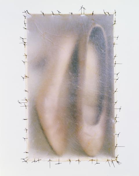 דוריס סלסדו, Atrabiliarios (פרט), 1992-2004 נעליים, קיר גבס, צבע, עץ, סיבי חיות וחוטים כירורגיים, נישות ו-40 קופסאות, מידות משתנות, מוזיאון סן פרנסיסקו לאמנות מודרנית, קרן רכישות: מתנת קרלה אמיל וריץ' סילברסטין, פטרישה וראול קנדי, איליין מקאון, ליסה וג'ון