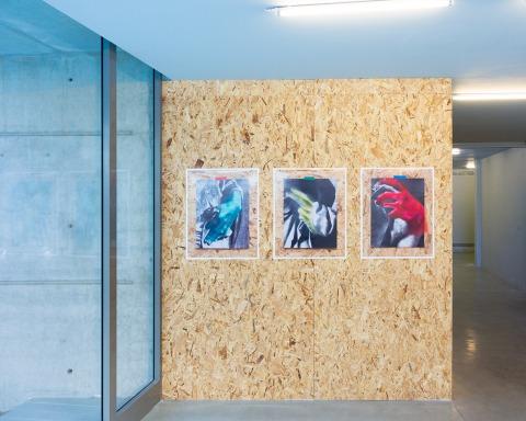 أوران هوفمان من سلسلة Dialogue sur le Coloris,  منظر إنشاء من قلب مريض-حب، اللوبي – مكان للفت، تل أبيب 2020. قيّمة المعرض: أوريت مور، بلطف الفنان
